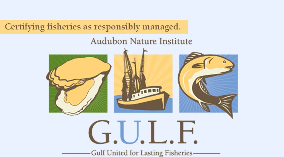 Audubon Nature Institute, Gulf United for Lasting Fisheries: Certifying fisheries as responsibly managed. Helping the Gulf Shrimp Industry.