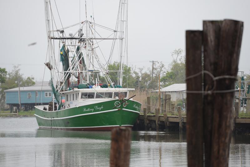 David Chauvin's Seafood - American Shrimp Processors ...